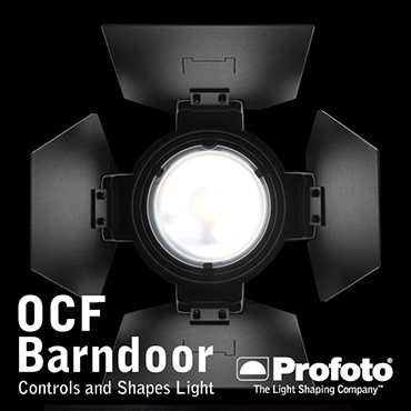 [Profoto] OCF-CAMERA FLASH Barndoor